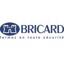 BRICARD SERIAL